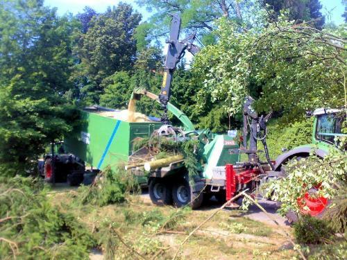 Entsorgung von Holz aus Plegearbeiten