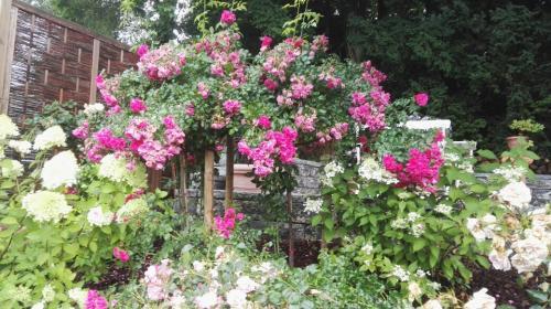 Gartenestaltung