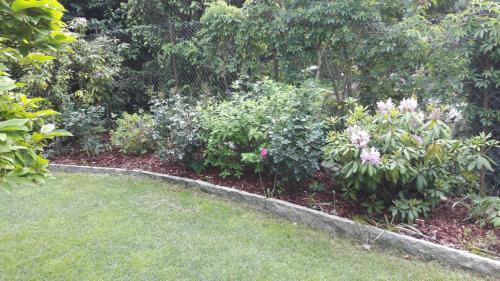 Gartenestaltung; Beete bepflanzen