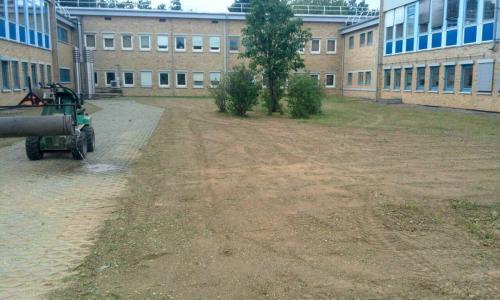 Gartenpflege;-Rasenfläche-erneuern,-Rasen-sähen