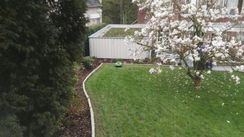 Rasen mit Einfassung