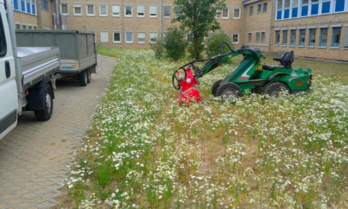 Gartenpflege; Rasenfläche erneuern, Saatbeet vorbereiten mittels Fräse